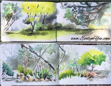 Maranoa Gardens by Evelyn Yee