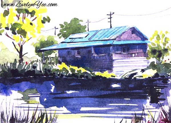 Hayfield Wetlands by Evelyn Yee