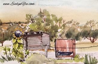 Wicked Virgin Olive farm by Evelyn Yee