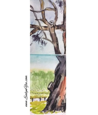 Tree in watercolour by Evelyn Yee