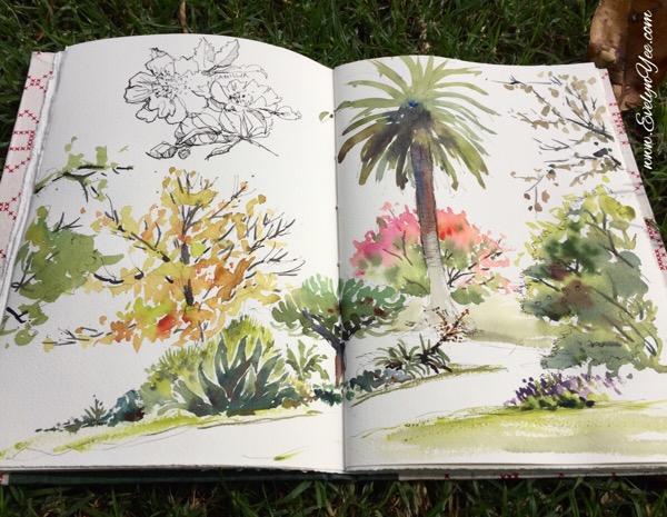 Botanic Gardens watercolour by Evelyn Yee