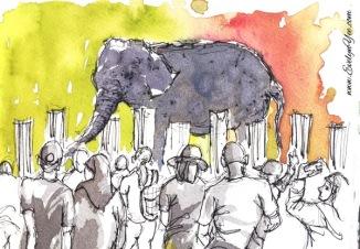 Elephants watercolour by Evelyn Yee
