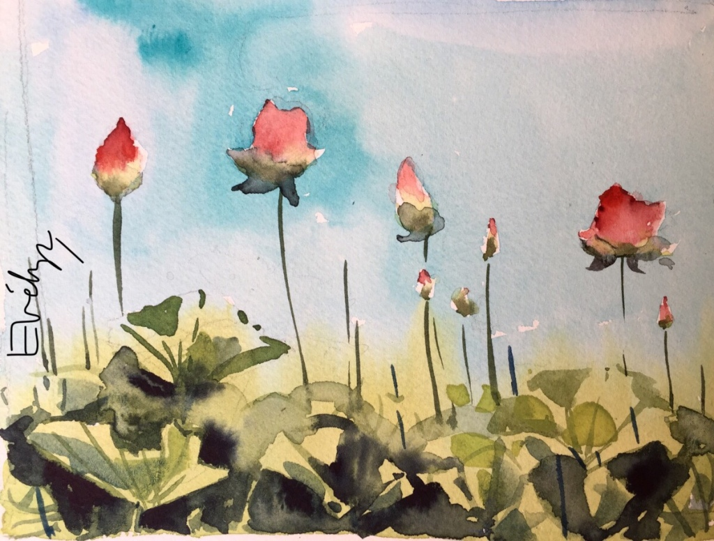 Lotus by Evelyn Yee