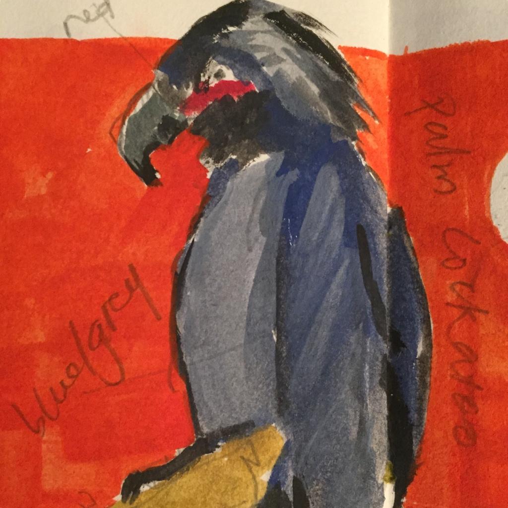 Bird Sketch by Evelyn Yee