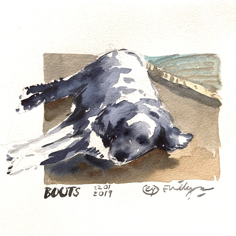 Sleeping dog watercolour by Evelyn Yee