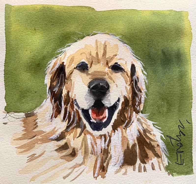 Golden Retriever watercolour by Evelyn Yee